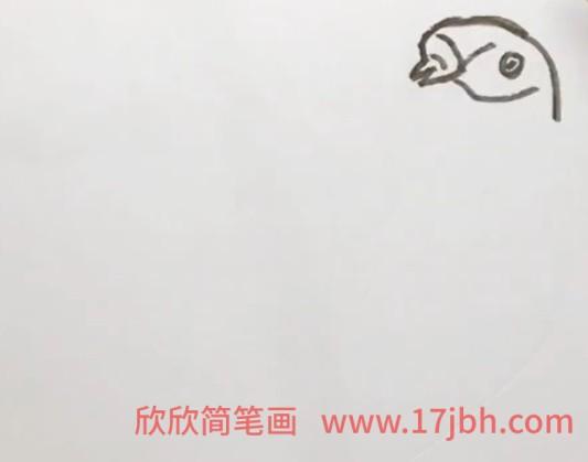 怎么画小鸟简笔画步骤