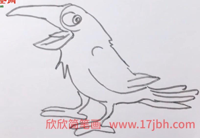 犀鸟图片卡通简笔画