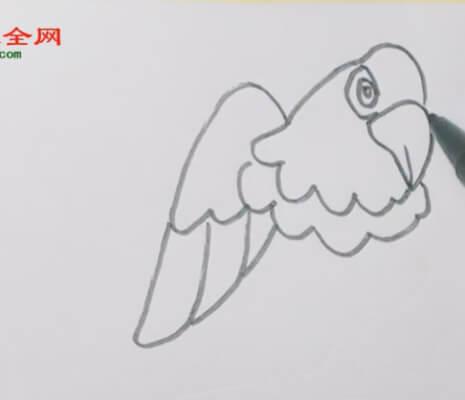 儿童简笔画老鹰
