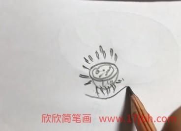 荷花简笔画