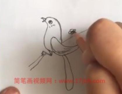 喜鹊登枝简笔画