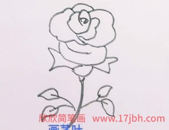 玫瑰花简笔画图片