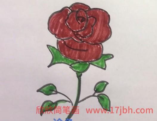 玫瑰花简笔画