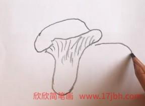 蘑菇图片简笔画彩色