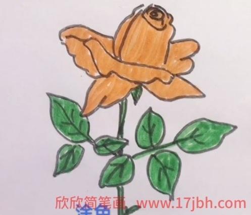 玫瑰花怎么画
