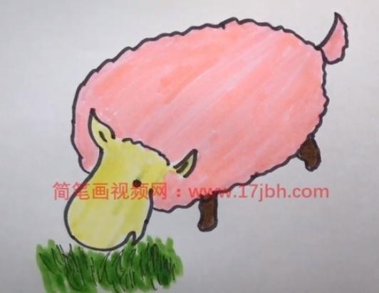 小羊简笔画图片大全