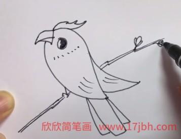 小鸟简笔画步骤