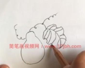 葫芦藤蔓简笔画