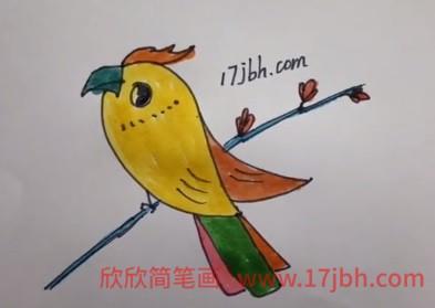 小鸟简笔画彩色