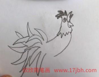 鸡的简笔画