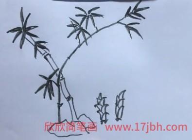 竹子简笔画黑白