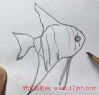 海洋生物简笔画