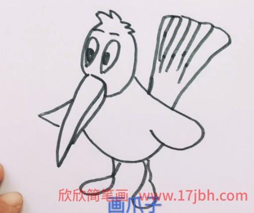 杜鹃鸟简笔画彩色