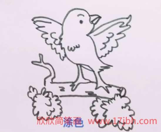 杜鹃鸟简笔画视频