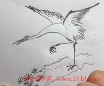 松鹤延年简笔画
