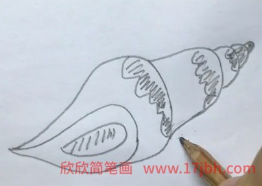 海螺简笔画图片大全