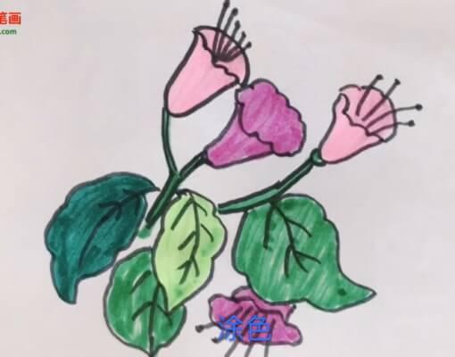 儿童花朵简笔画视频