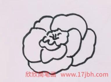 儿童玫瑰花的简笔画