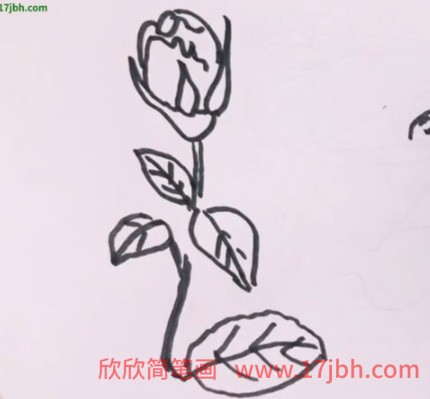 简笔画玫瑰花