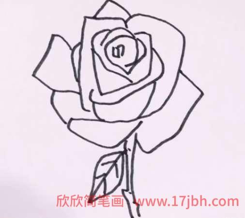 玫瑰花怎么画 简笔画