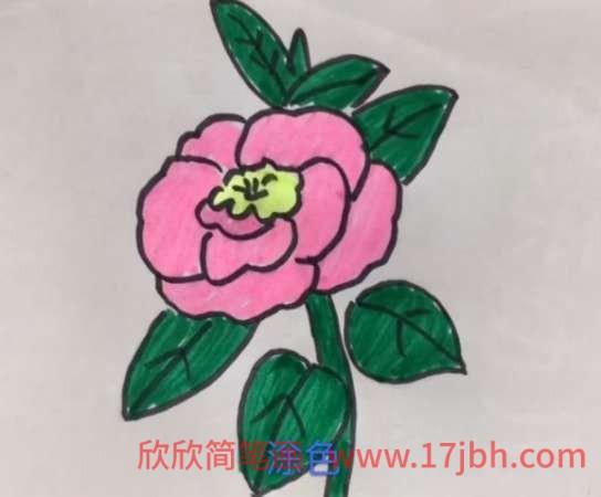 玫瑰花简笔画大全