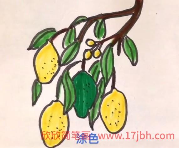柠檬的简笔画图片大全