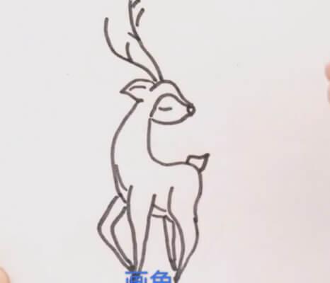 梅花鹿简笔画彩色