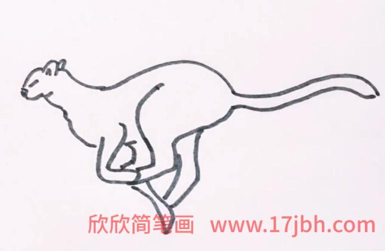 猎豹简笔画