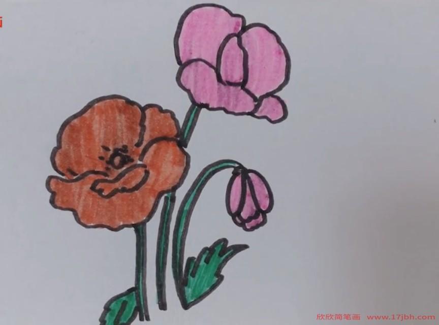 怎么画花朵简笔画好看