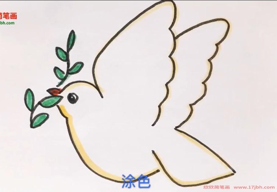 鸽子简笔画彩色