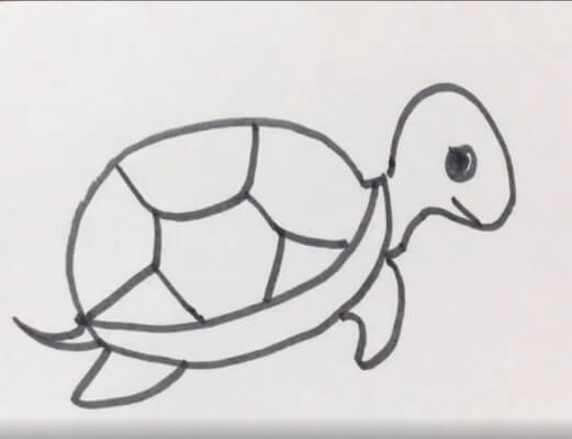 小乌龟简笔画彩色